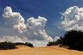 Картинка небо, облака, пустыня, кустарники