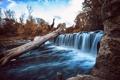 Картинка деревья, природа, река
