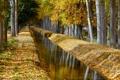 Картинка природа, осень, канал