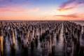 Картинка закат, Melbourne, Princes Pier