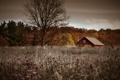 Картинка осень, деревья, пейзаж, природа, дом, фото, фон