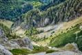 Картинка лес, горы, Austria, Alps, Южный склон Schneeberg