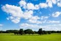 Картинка облака, Peace Of Nature, небо, поле, зелень, много, дерево