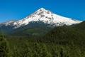Картинка лес, гора, USA, США, State of Oregon, Штат Орегон
