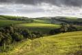 Картинка деревья, холмы, поля, Англия, Корнуолл, деревенский пейзаж
