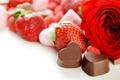 Картинка клубника, розы, шоколад, фрукты, лепестки, цветы