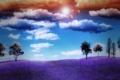 Картинка поле, небо, солнце, облака, деревья, природа, воздушные шары