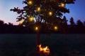 Картинка ночь, лампы, дерево, настроение, парень