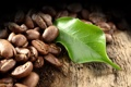 Картинка дерево, кофе, листик, зёрна