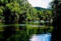 Картинка деревья, река, камни