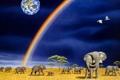 Картинка радуга, арт, Земля, слоны, William Schimmel
