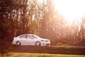 Картинка солнце, свет, деревья, тюнинг, stance, пневмо, infiniti M35