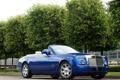 Картинка деревья, синий, купе, london, coupe, rolls-royce, phantom