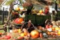 Картинка осень, дом, дерево, урожай, тыква, повозка, усадьба