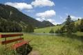 Картинка трава, солнце, день, лавка, речка