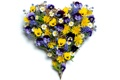 Картинка фото, Цветы, Сердце, Ромашки, Букет, День святого Валентина, Анютины глазки