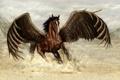 Картинка движение, фантастика, конь, крылья, пыль, арт, бег