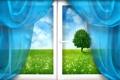 Картинка поле, трава, дерево, окно, шторы, одуванчики
