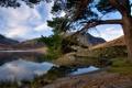 Картинка горы, озеро, дерево, холмы, берег, Природа