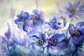 Картинка акварель, картина, цветы