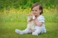 Картинка поле, природа, девочка, котёнок, сидит, держит
