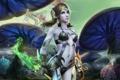 Картинка девушка, кинжал, магия, грибы, perfect world