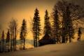 Картинка зима, дом, деревья, природа