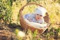 Картинка цветы, корзина, ромашки, шапочка, младенец