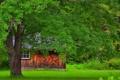 Картинка трава, природа, дерево, домик
