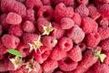 Картинка лето, ягоды, малинка