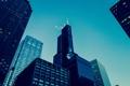 Картинка Чикаго, Здание, USA, Архитектура, Chicago, Willis Tower