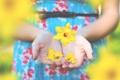 Картинка цветок, желтый, руки, лепестки, пальцы, нарцисс