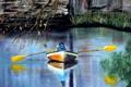 Картинка озеро, лодка, картина