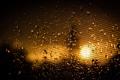 Картинка солнце, капли, макро, свет, клетка, Raindrops