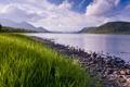 Картинка небо, трава, облака, озеро, берег