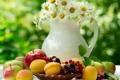 Картинка яблоки, ромашки, summer, фрукты, flowers, абрикосы, fruits
