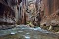 Картинка река, ручей, камни, скалы, каньон, Zion National Park, сша