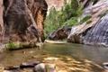 Картинка деревья, река, камни, скалы, поток, каньон