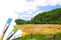 Картинка зелень, небо, трава, пейзаж, краска, облако, сено