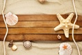 Картинка песок, ракушки, морская звезда, улитка