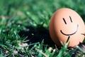 Картинка макро, улыбка, настроение, яйцо, смайл, травка