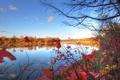Картинка осень, небо, листья, деревья, река
