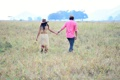 Картинка зелень, поле, трава, девушка, деревья, любовь, фон
