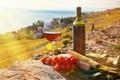 Картинка вино, сыр, помидоры, виноградники