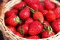 Картинка fresh berries, клубника, корзина, strawberry, ягоды