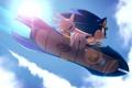 Картинка небо, полет, доска, Sonic, ежи