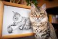 Картинка кот, клубок, рисунок, игра, картина, кошка