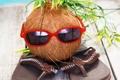 Картинка coconut, сланцы, очки, summer, кокосовый орех, funny, vacation