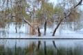 Картинка зима, осень, листья, снег, пруд, парк, два сезона