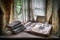 Картинка книги, окно, Welsh window